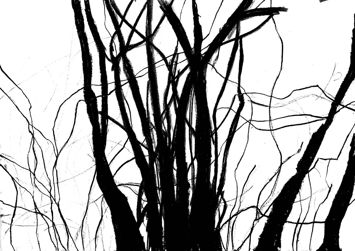 SUM-I | 2016-17 | Ölfarbe u. Kohle auf Papier | © Martina Stürzl-Koch