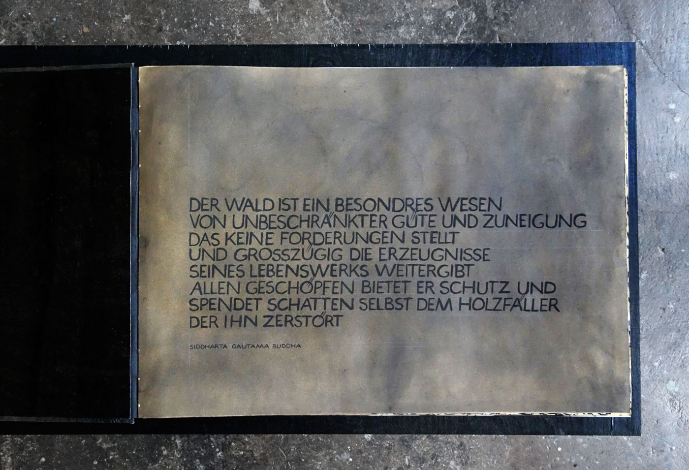 SUM-I | 2017 | Buch I Waldseite | 42 x 30 cm | © Martina Stürzl-Koch